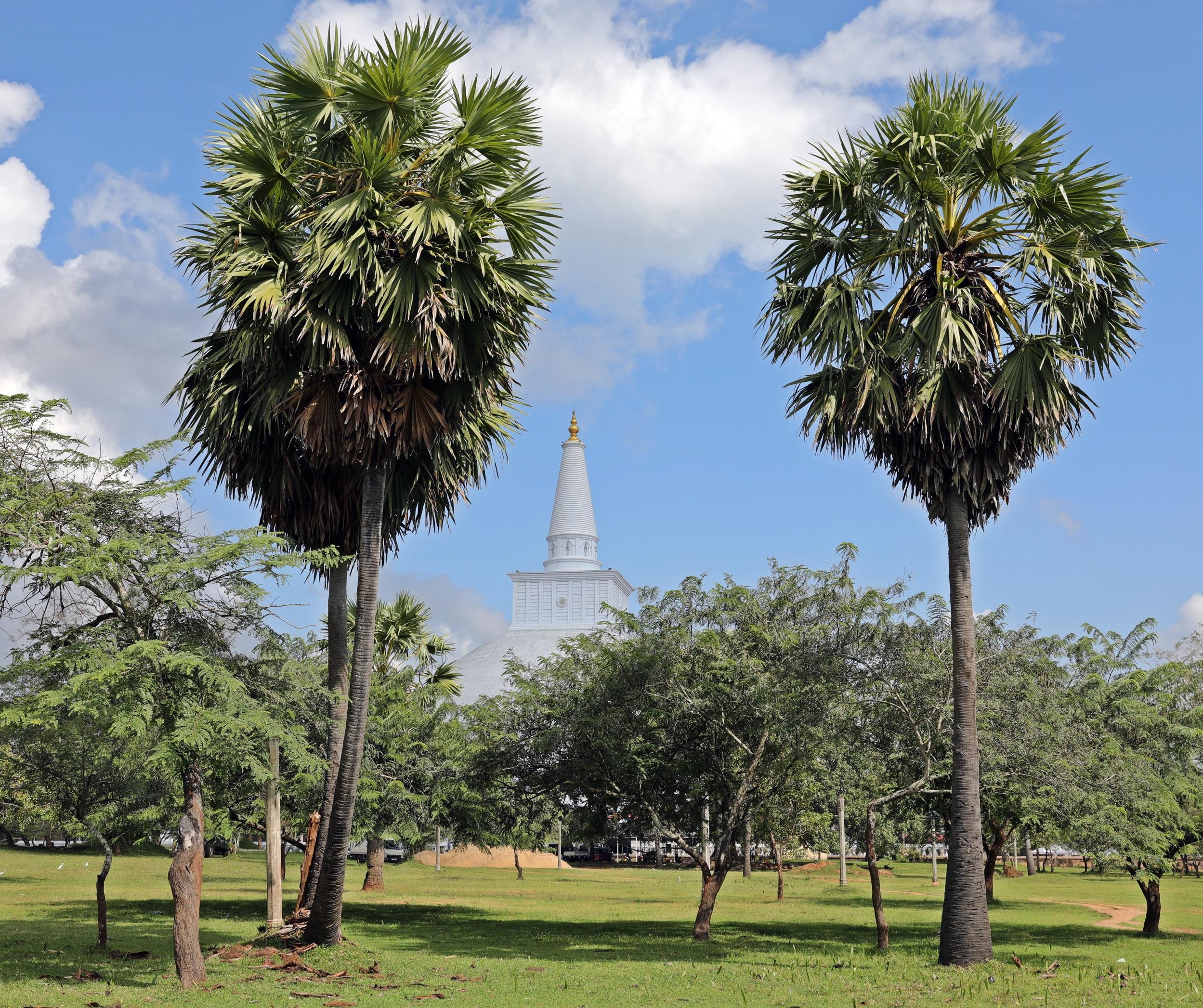 Ruvanelraya Dagoba, Anuradhapura