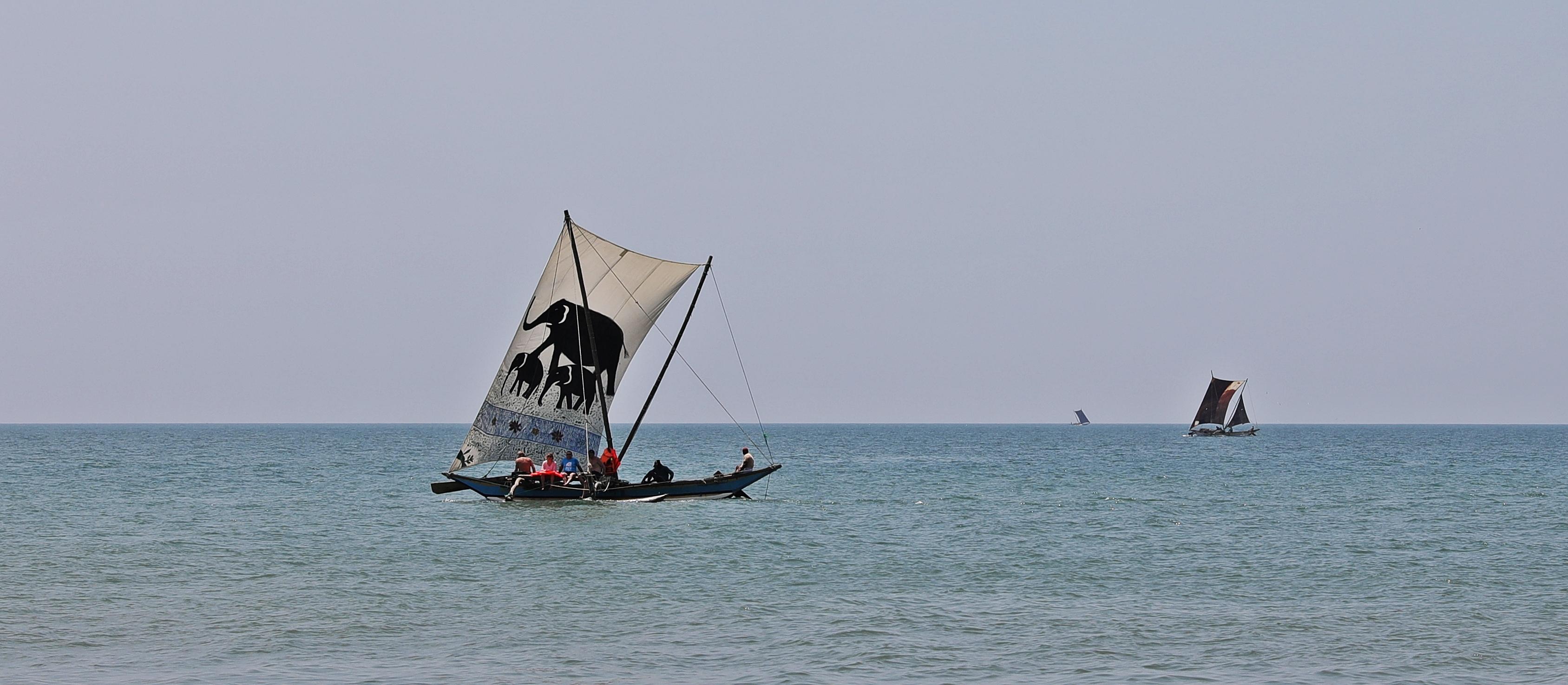 'Catamarans' sailing near Negombo beach