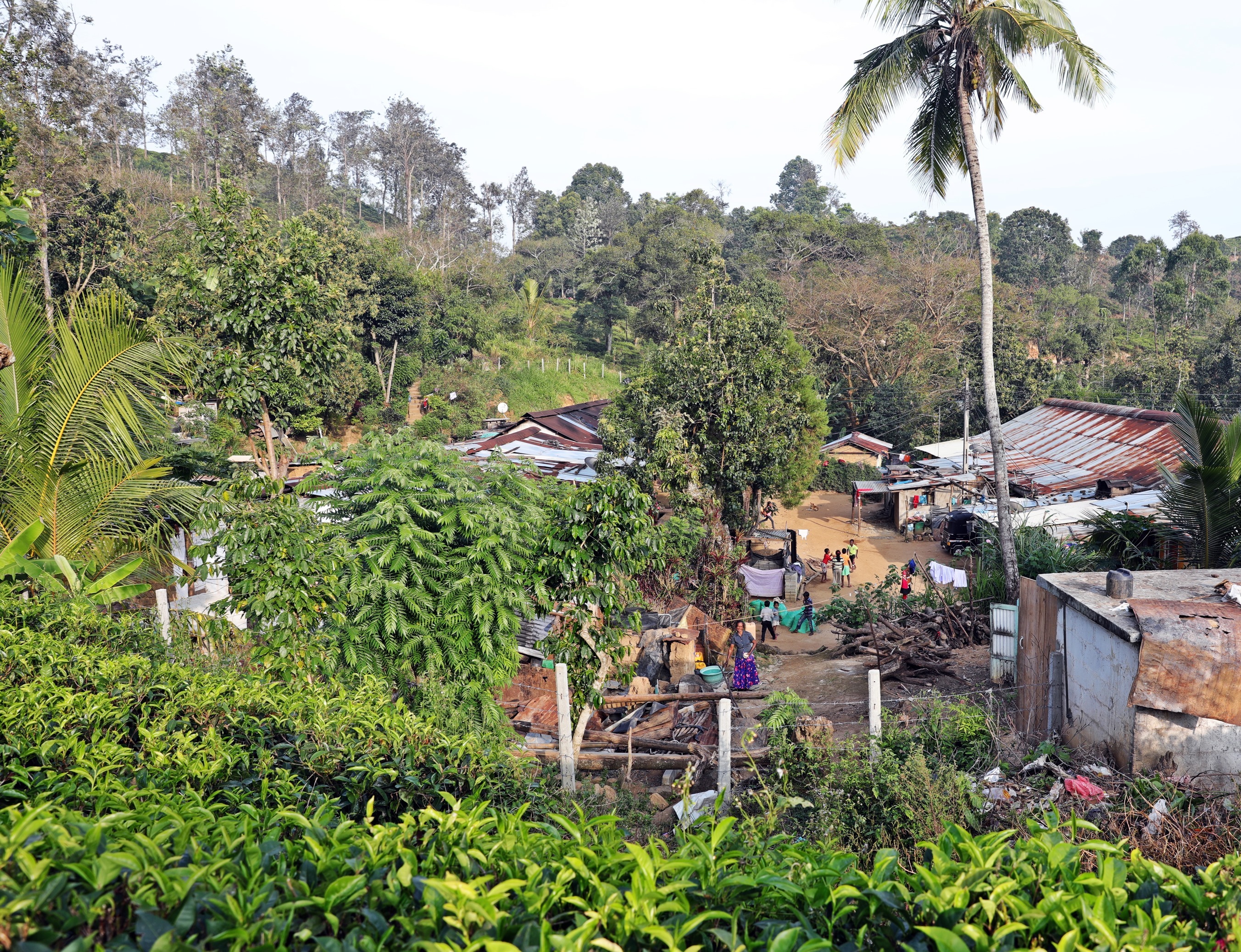 Tamil Village, Little Adam's Peak, Ella
