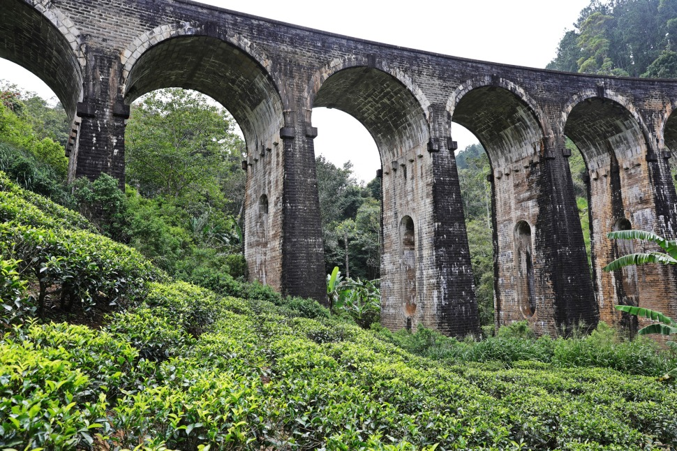 Nine Arch Bridge and tea trees, Ella