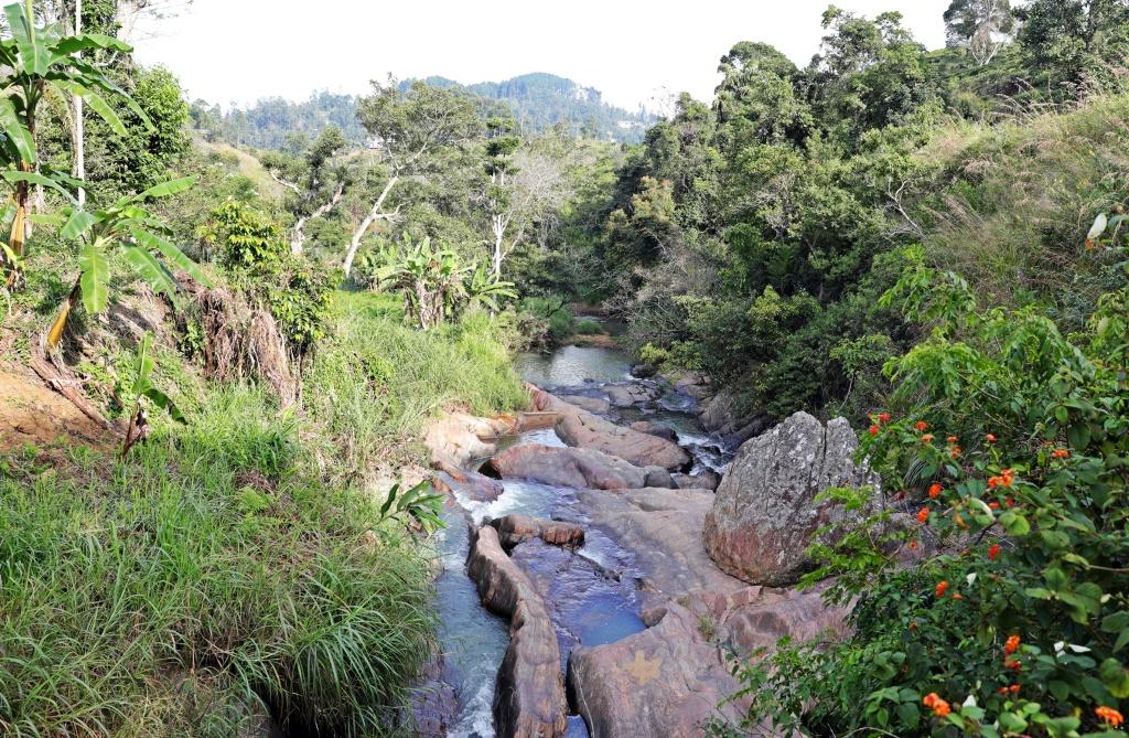 Stream on the Ella Rock trek