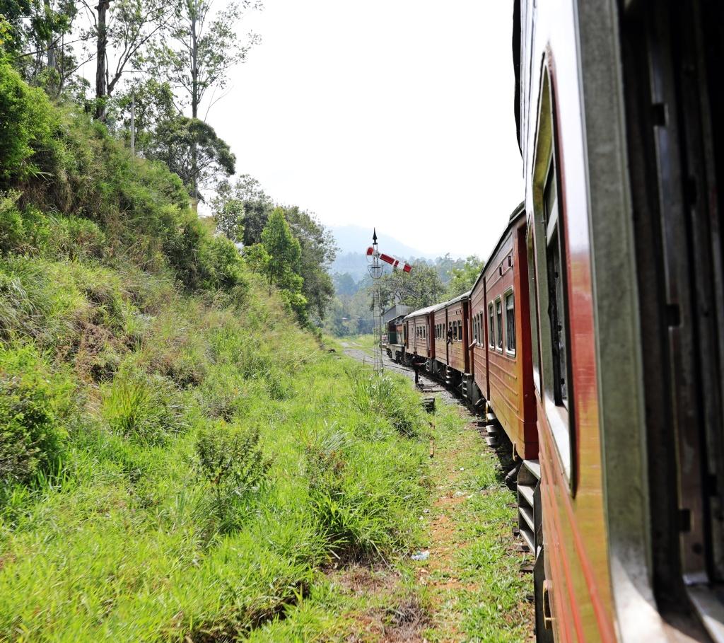 Train rounding the hil before Demodara Station