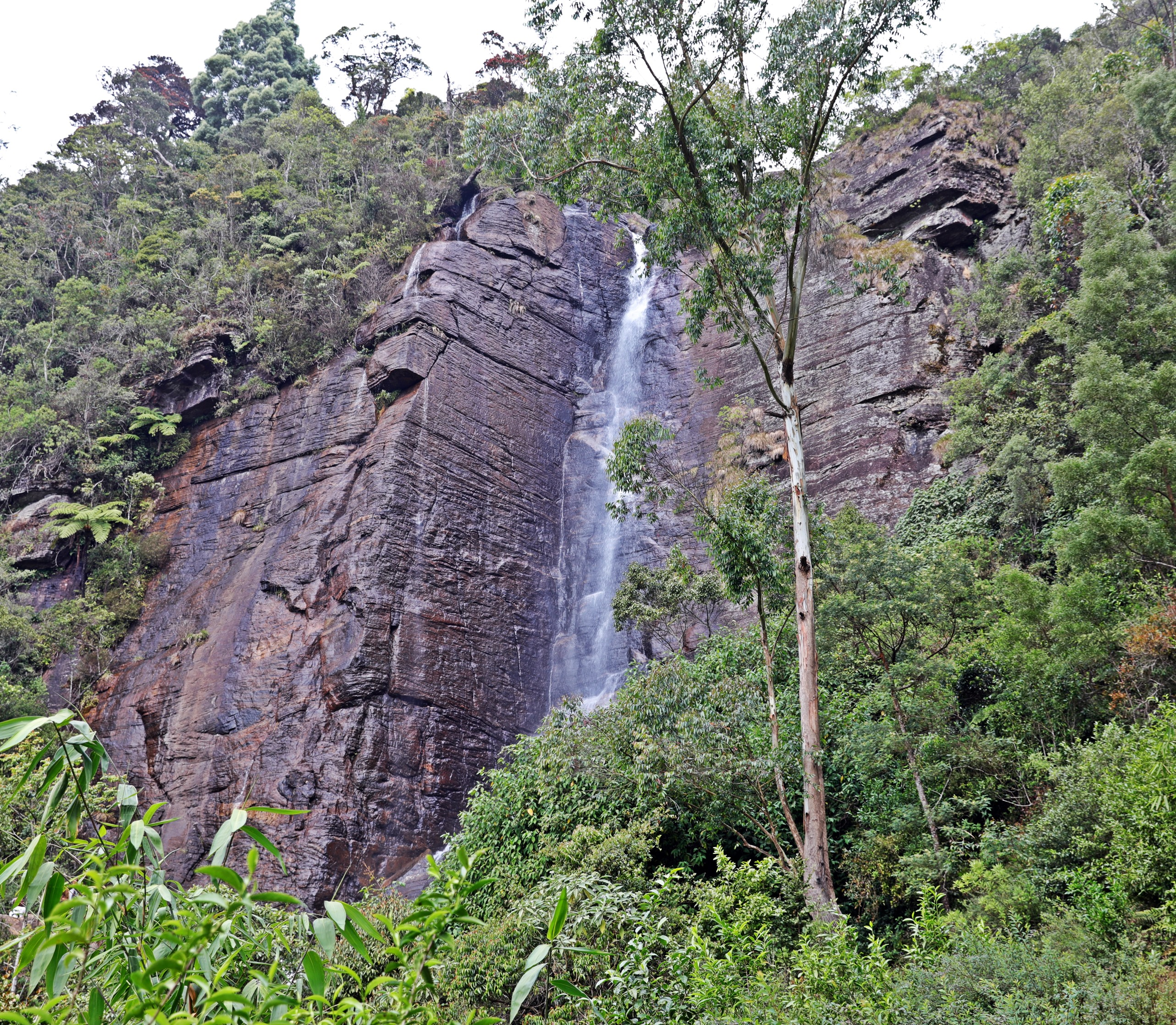 Lover's Leap Waterfall, Nuwara Eliya