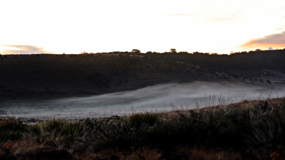 Sunrise and mist, Horton Plains