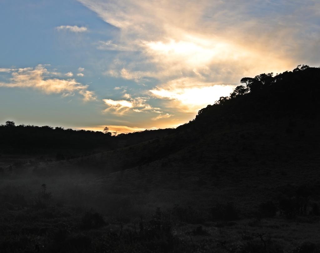 Sunrise and mist, Horton Plains