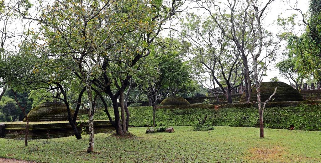 Mossy ruins, Alahana Pirivena, Polonnaruwa