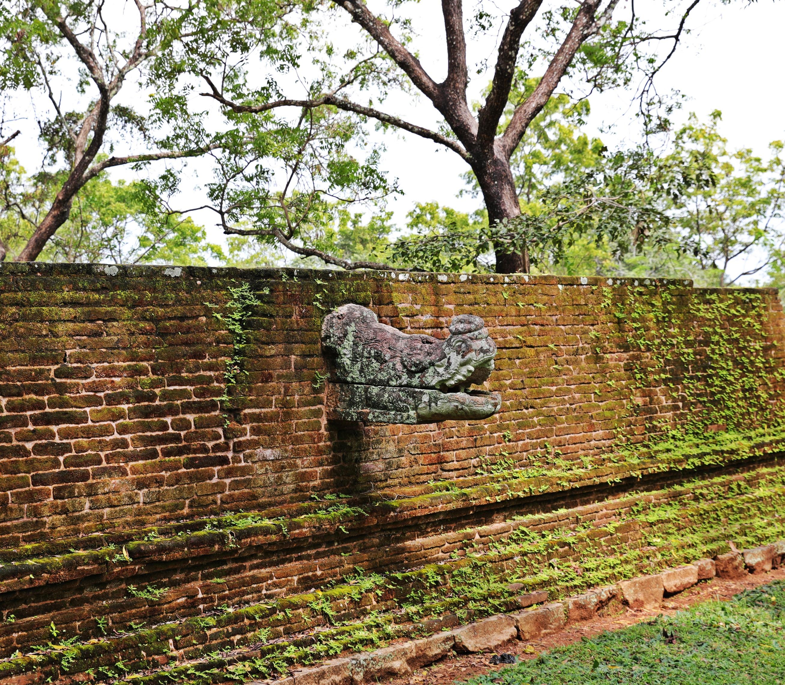 Crocodile spout, Alhana Pirivena Monastery