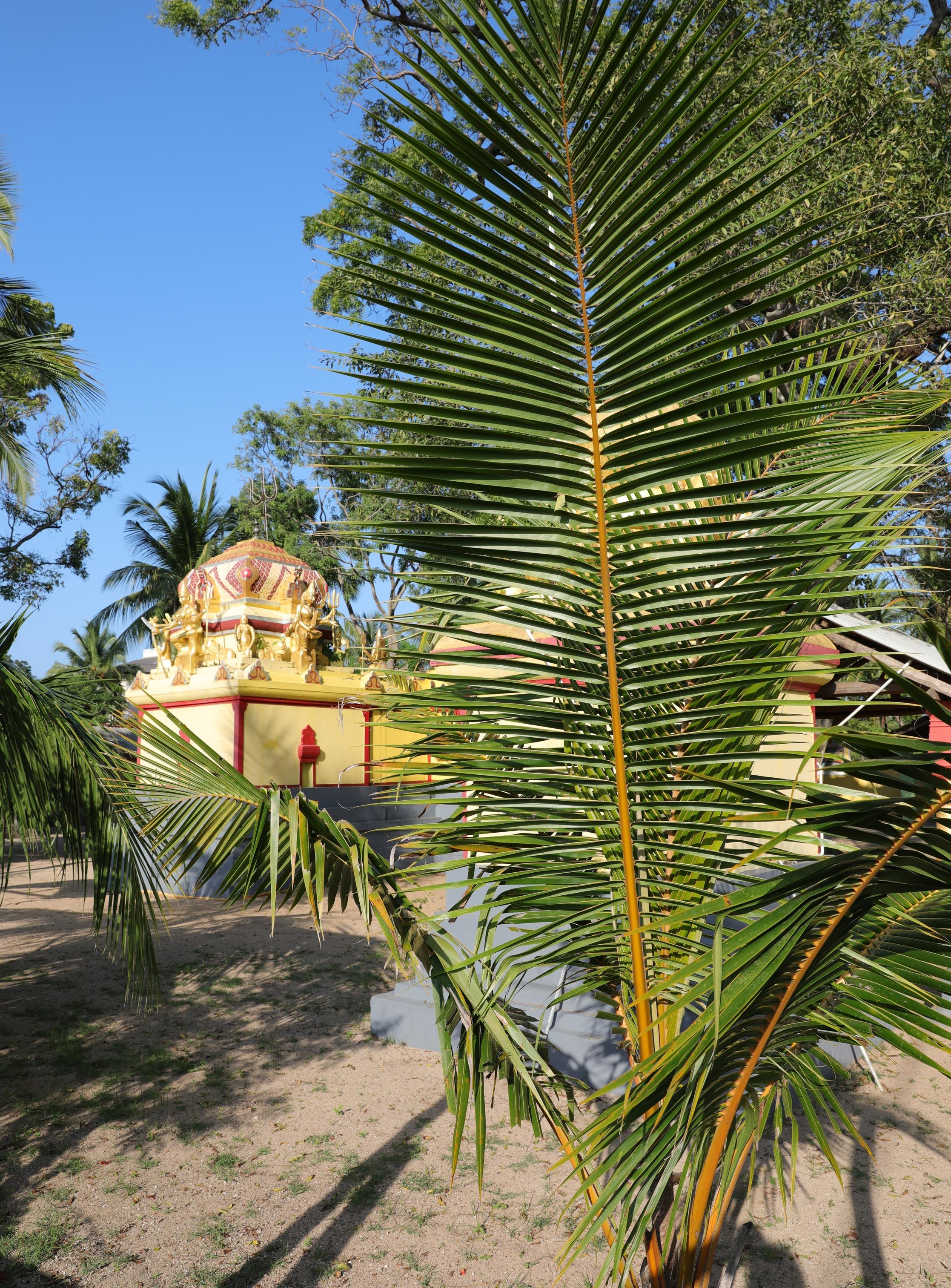 Hindu temple, Kalkudah