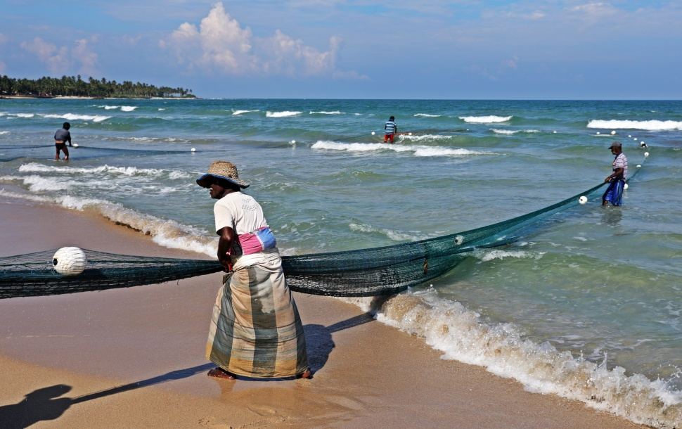 Fishermen pulling in their nets, Trincomalee