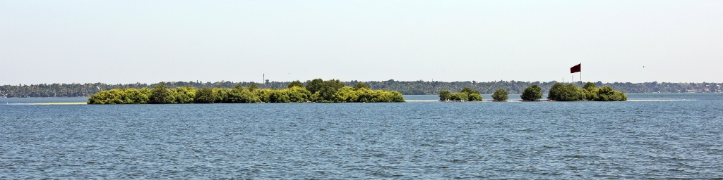 Small island on a shallow Kerala lake
