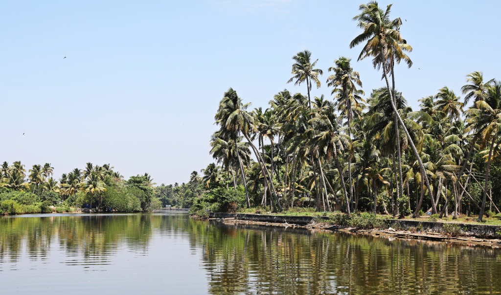 Palm fringed canal on the Kerala backwaters