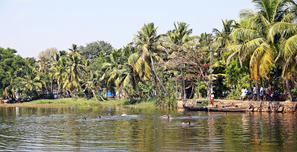 Keralites swimming in a backwater canal