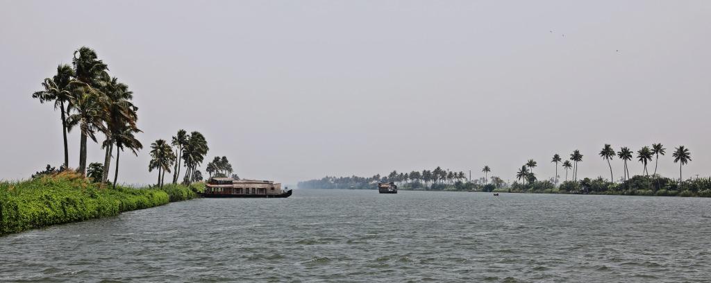Open canal, Kerala backwaters