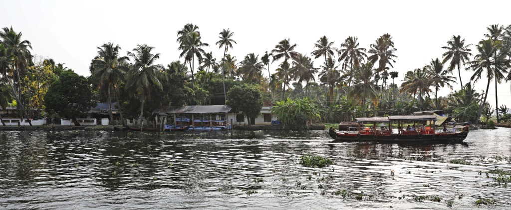Village, Kerala backwaters