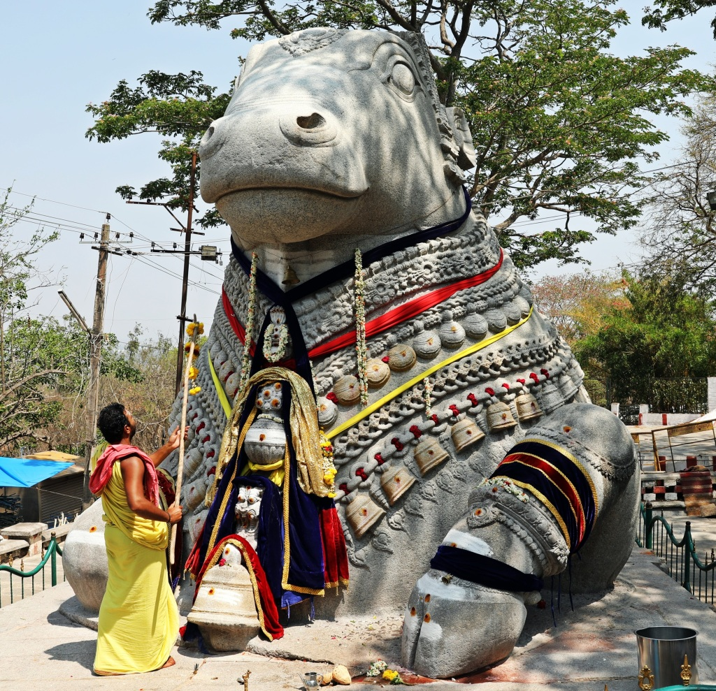 Nandi statue and pundit, Chamundeshwari Temple, Mysore