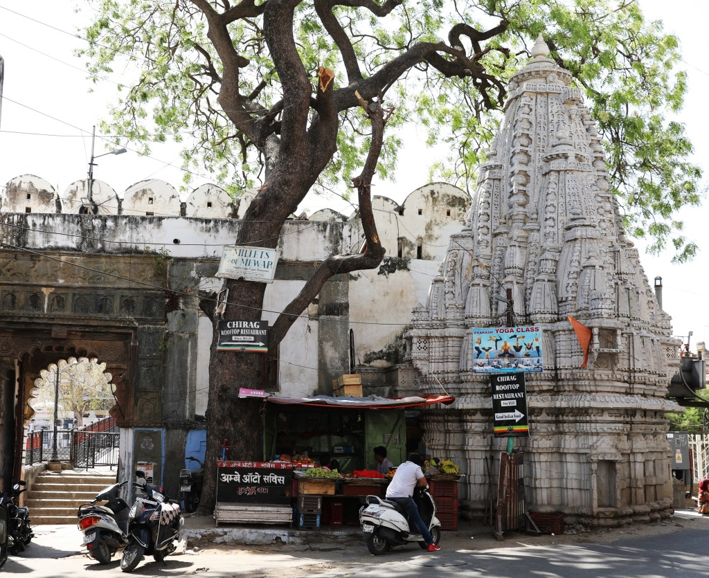 HIndu temple, Udaipur