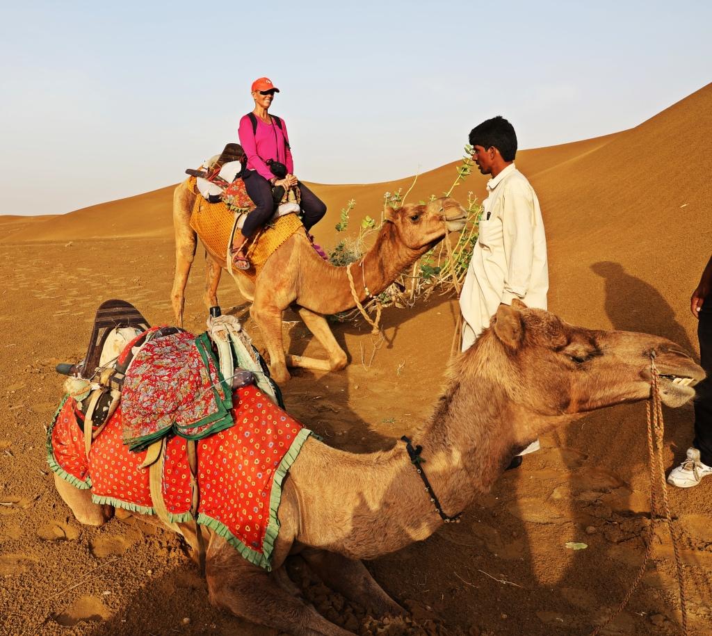 Maggie on Raj as it sits down, Thar Desert
