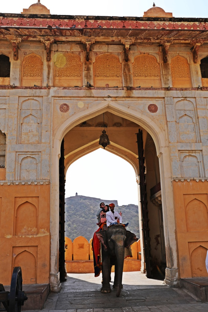 Elephant entering through Sun Gate , Amer Fort