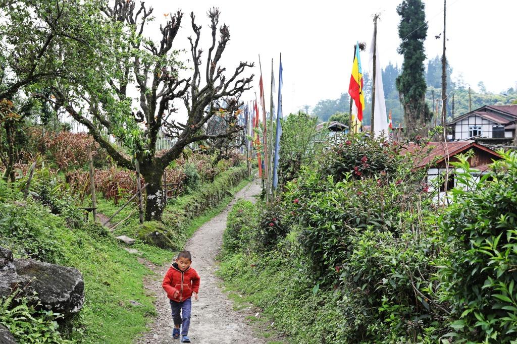 Yuksom street, Sikkim