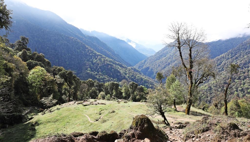 View from Bhakim Camp, Day 2 Goecha La Trek