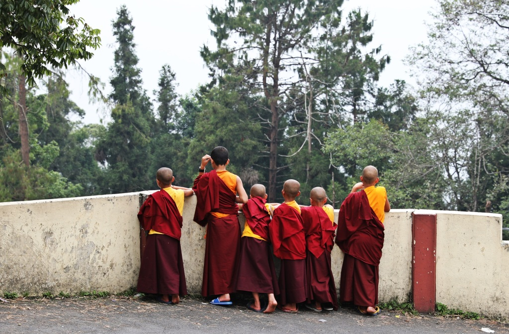 Novice monks, Tsuglagkhang Gompa