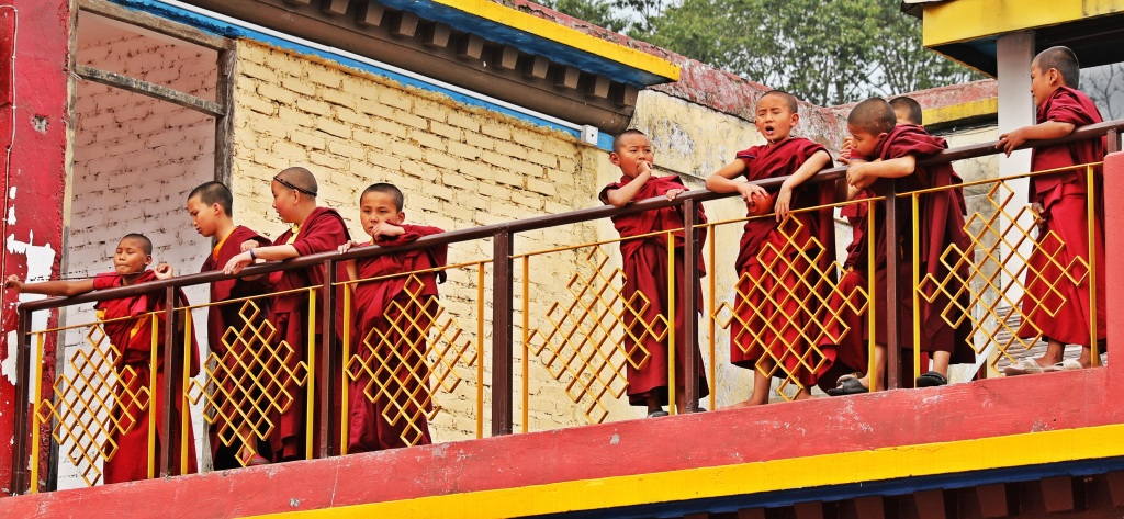Novice monks, Rumtek Gompa