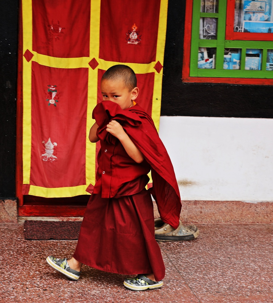 Novice monk, Rumtek Gompa