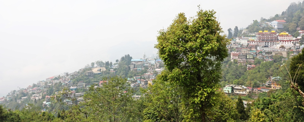 Darjeeling and Dali Gompa