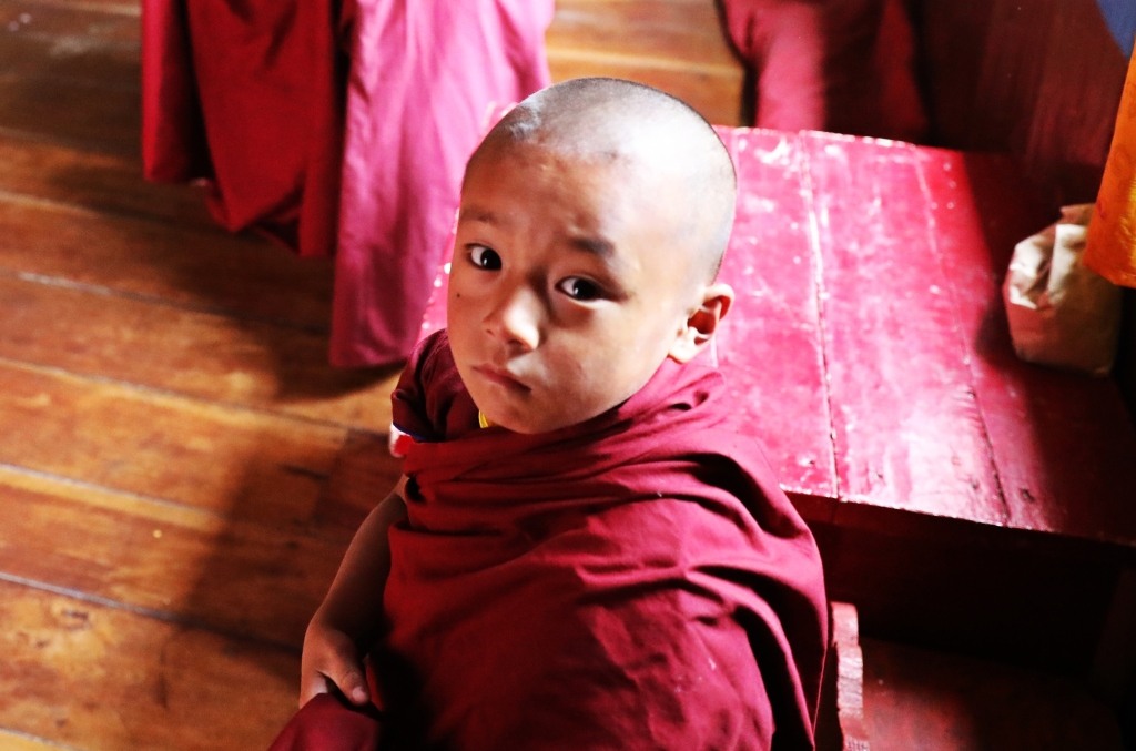 Novice monk, Dali Gompa