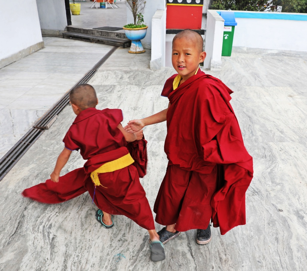 Novice monks, One brave, One shy, Dali Gompa, Darjeeling