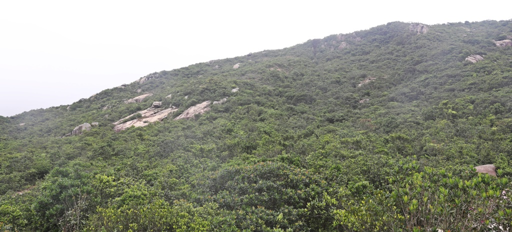 Dragon's Back Ridge, Hong Kong