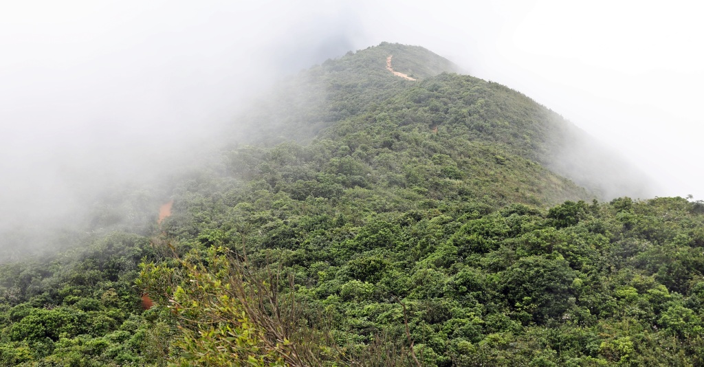 Ridge of Dragon's Back Trail, Hong Kong