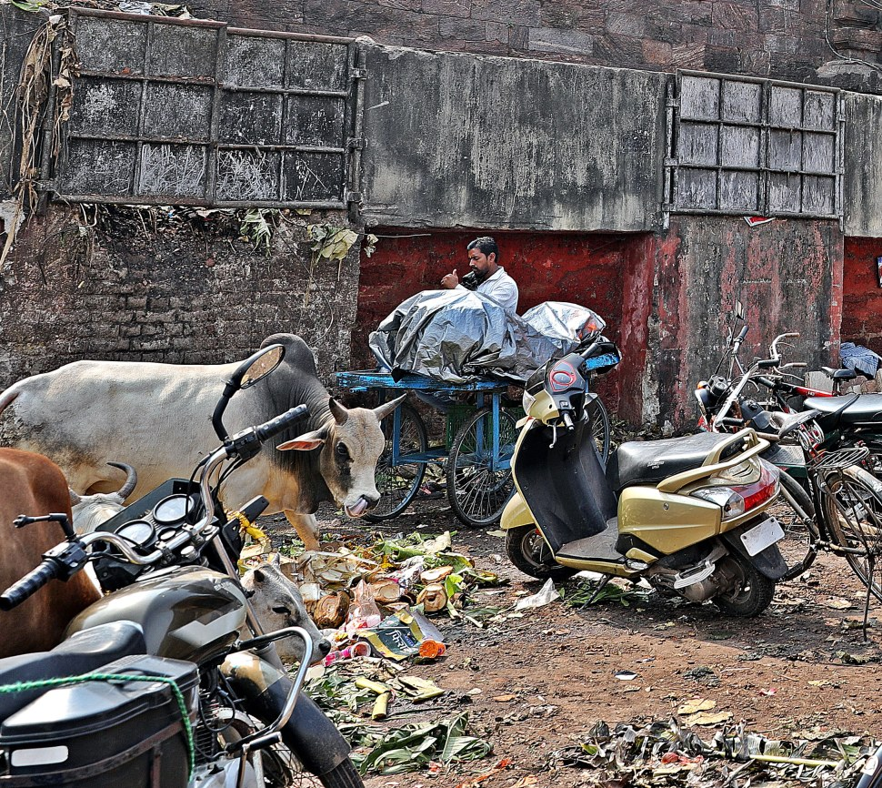 Pollution on the streets of India