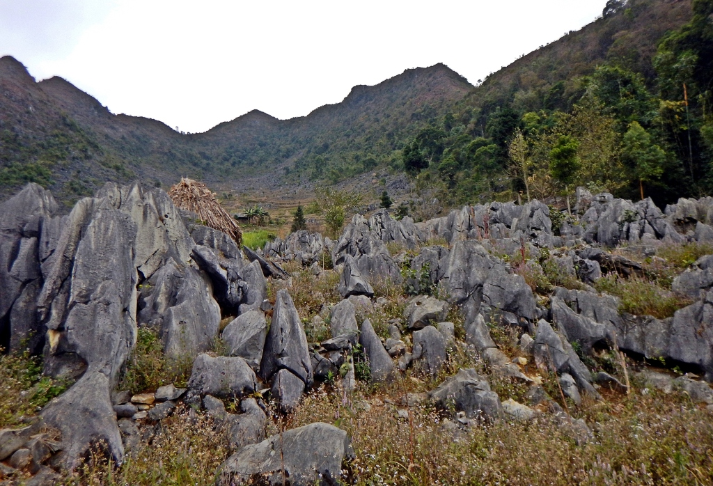 Rock pinnacles, Dong Van Plateau