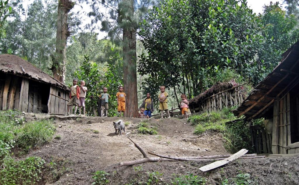 Dani village, Papua Province