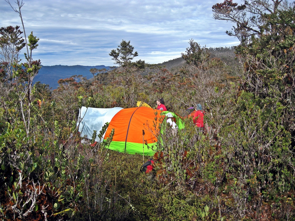 Campsite in the bushes, Carstensz Pyramid