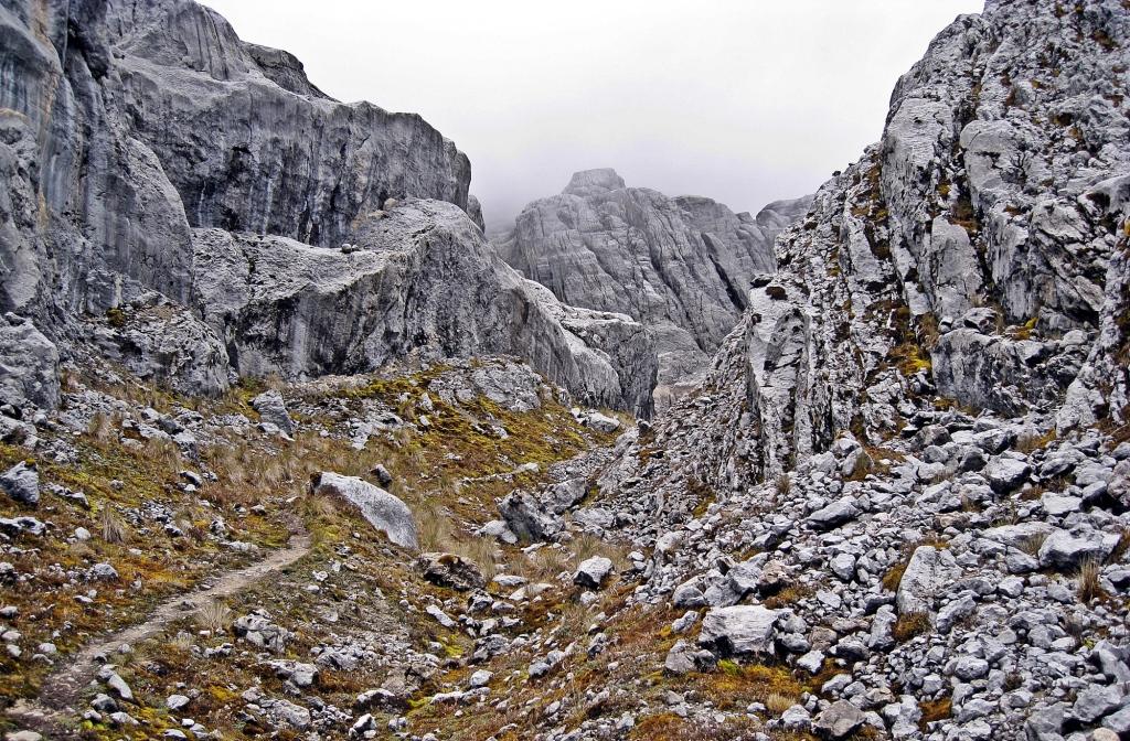 Carstensz Pyramid Trek
