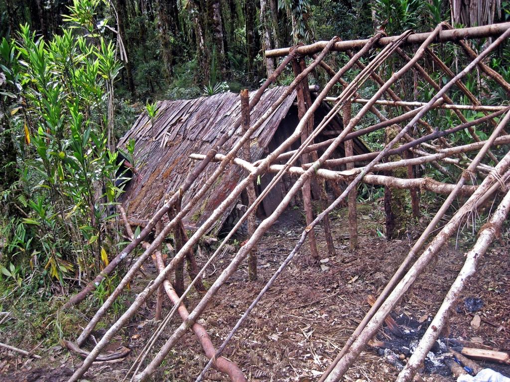 Porter shelter, Carstensz Pyramid Trek