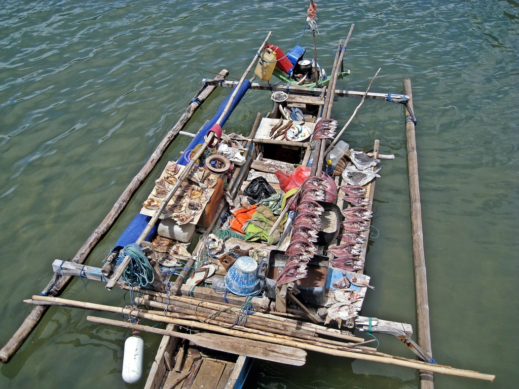 Fishing boat with drying fish, Flores Sea
