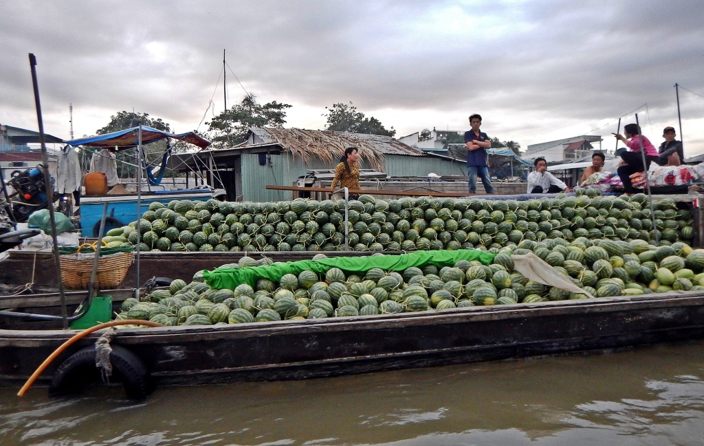 Watermelons, Cai Rang Floating Market
