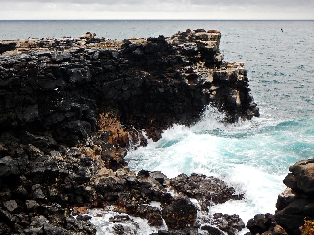 Rocky coastline, Galapagos