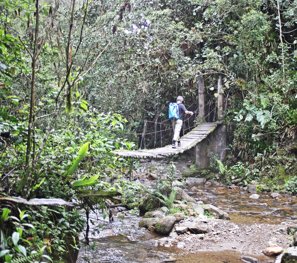 Rickety Bridge, Valle de Cocora