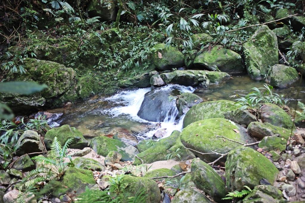 Rio Buritaca, Cuidad Perdida Trek