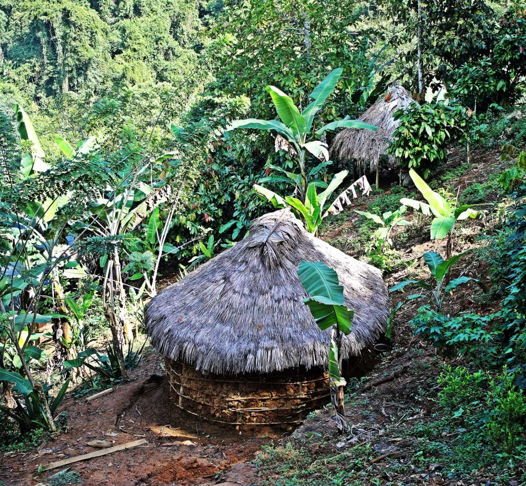 Indigenous homes, Ciudad Perdida Trek