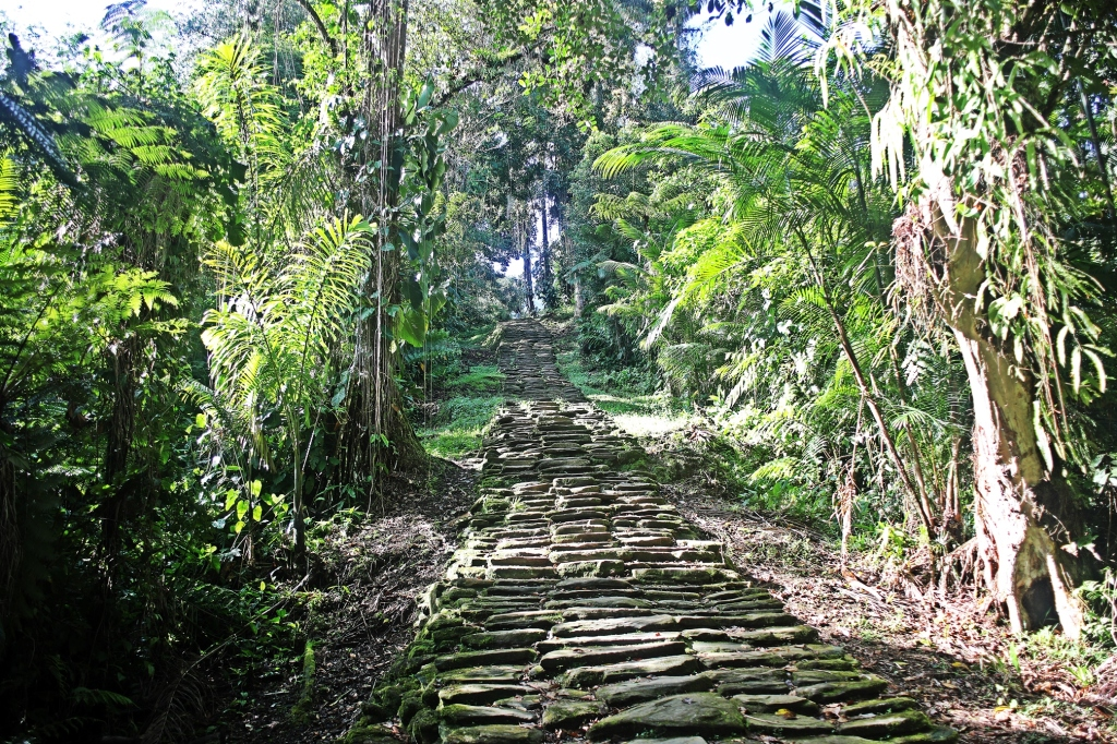Ancient stairs, Cuidad Perdida