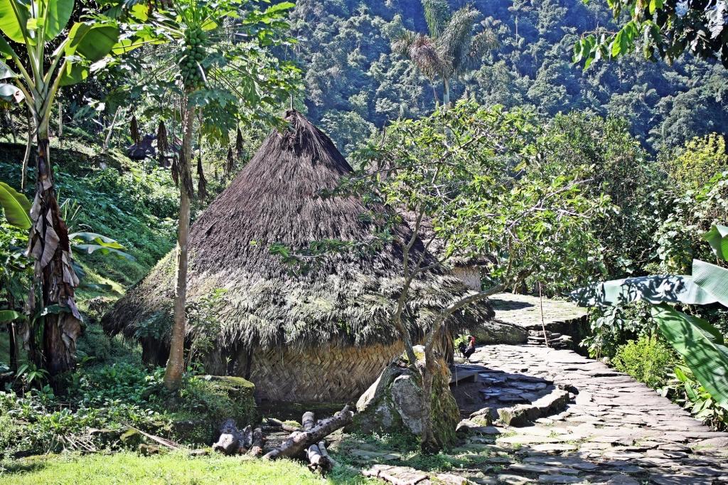 Mamo house, Ciudad Perdida