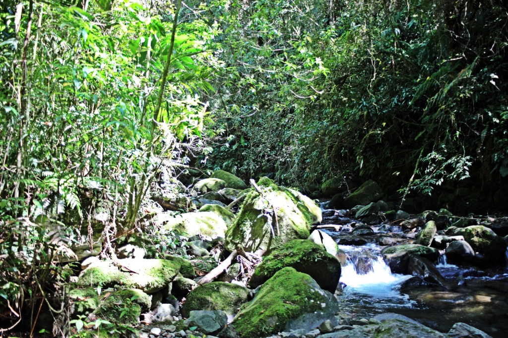 Lost Waterfalls trek, Boquete