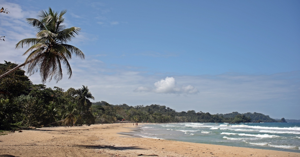 Red Frog Beach, Bastiementos Island