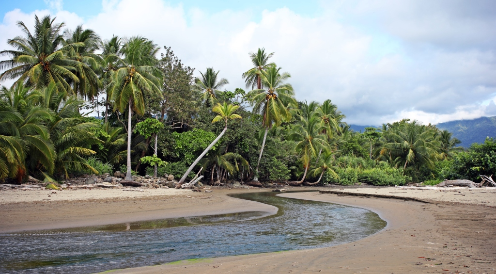Estuary, Ballena National Marine Park