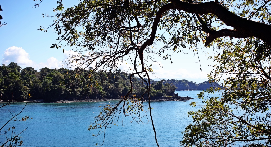 Cove in Manuel Antonio National Park